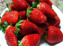 للبيع فواكة مجمدة للعصيرات