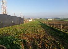 ارض صالحة للبناء والزراعة ..بجانب الطريق