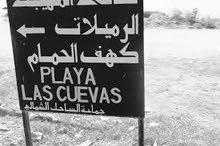 أرض ساحلية 10000م للبيع عشكار