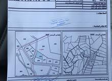 ارض سكن ب طريق الجامعه الالمانيه