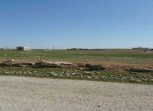 قطعة أرض مميزة على طريق المطار للبيع في منطقة القليب بالقرب من مشاريع نقابة المهندسين اللبن
