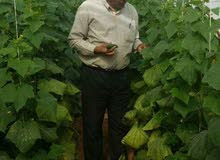 مهندس  زراعى،،،طالب  وظيفه
