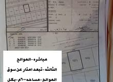الموالح3 -/تبعد امتار بسيطه عن سوق الموالح-/