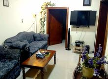 Family Accommodation for Rent(Dec 2020 onwards)