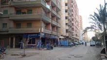 شقة لايجار فى طنطا