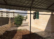 منزل(شقة أرضية) مع حديقة فسيحة في الحي الشرقي شرق نادي الظباط