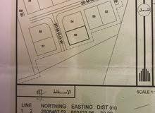حلبان مربع 6 نخل خلف مشروع سندان مطلوب 19500 فقط الارض كونر في اول المخطط
