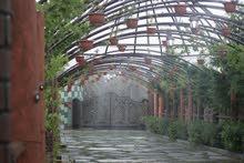 مزرعة  الروضة الخضراء ( صحار)