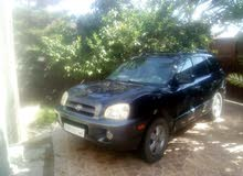 Hyundai Santa Fe 2004 For sale - Blue color