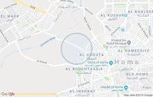 بستان - ارض زراعية حمص - منطقة الملعب