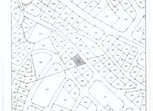 أرض 925م2 سكن تنظيم ب، قرب مركز أمن تلاع العلي