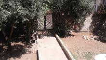 بيت ارضي 150على قطعة ارض مساحتها 504م مزروعة زيتون(16شجره)وعنب15داليه وتين غيره.