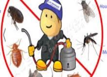 شركه مكافحه الحشرات و الصراصير والنمل