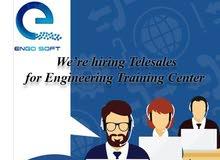 telesales engineer
