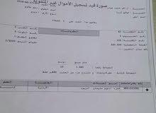 10 دونمات جنوب عمان الثريا