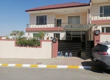 سلام تحياتي. بيت الطابقين للايجار في احلئ منطقه.