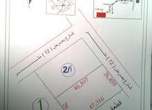 أرض 1250 م على شارع 12 م قرب ش المطبات بأم مبروكة