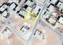 المفرق -الحي الجنوبي _ خلف مسجد الابرار