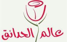 محل زهور وهدايا ببلجرشي للتقبيل