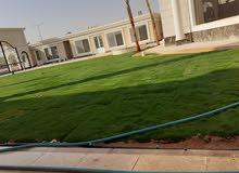 تنسيق حدائق وزراعه الثيل 0555937355