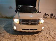 Ford Escape 2010 For sale - White color
