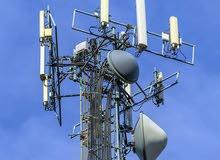 Team Leader , Telecom and Network