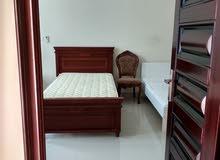 fully furnished villa for rent in el mureikh