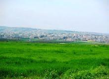 ارض للبيع الحصن حوض دبات ابو النصر مقابل الهبي لاند بالقرب من طريق ايدون