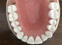 طقم اسنان نيسن مستعمل