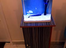 Fish Aquarium with cabinet stand
