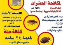 مكافحة جميع انواع الحشرات والقوارض وكفاله سنه علي العجينه الاصليه والرش