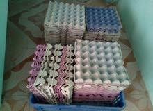 شدات بيض دجاج فاضية للبيع