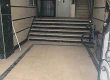 شقة للبيع بمنطقة شارع كلية اداب 175 متر