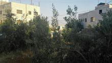 عمارة سكنية للبيع - الرجيب