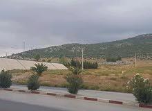 أرض عمرانية للبيع مساحتها21000م2