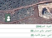 للبيع  اراضي  كتم  حوض وادي  حسان  اجمل منطقه غرب قصر الجيوسي 300  متر شارع  16