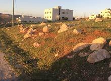 قطعة ارض مميزة للبيع في شفا بدران حوض عيون الذيب