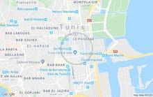 ارض كبرى 6000m² للبيع اسطنبول