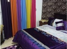 apartment area 35 sqm for rent