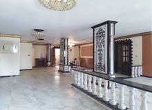 شقة لقطة في السعر والموقع في العجمي البيطاش الأسكندرية