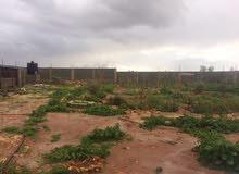 ارض ربع هكتار بوابه الفيض امتداد المزدوج باتجاه بوهادي