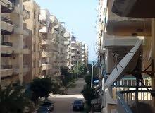 امتلك شقة للبيع في الإسكندرية مدينة6اكتوبر شاطئ النخيل عجمي كيلو21 روعة الجمال
