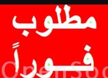 مطلوب مندوب مصري