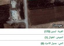 قطعة ارض مميزة جدا  اربد شارع البترا بجانب قصر عبد الرحيم الجمال منطقة فلل وقصور
