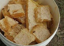 عسل السدر سمره طلح