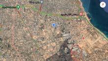 أرض 6000 متر واجهتين تاجوراء طريق الشاحنات شارع الضمان