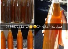 عسل سدر اصلي 100/100 النحل يترع ف جبال وسيوح جرب واحكم بنفسك