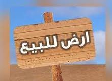 ارض في حي دمشق الجديده