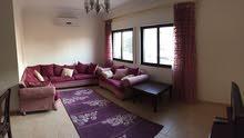 Fully Furnished apartment in Dahyet Al Rasheed شقة مفروشة بجانب اميمة ضاحية الرشيد