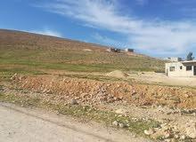 ارض للبيع في ابو الزيغان الشرقي